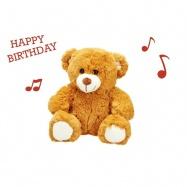 Medvídek plyšový Happy Birthday 25cm na baterie