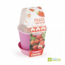 Mini zahrádka - Květináč Bell s jahodami