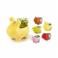 Mini zahrádka - Zvířátkový květináč ovečka - lichořeřišnice