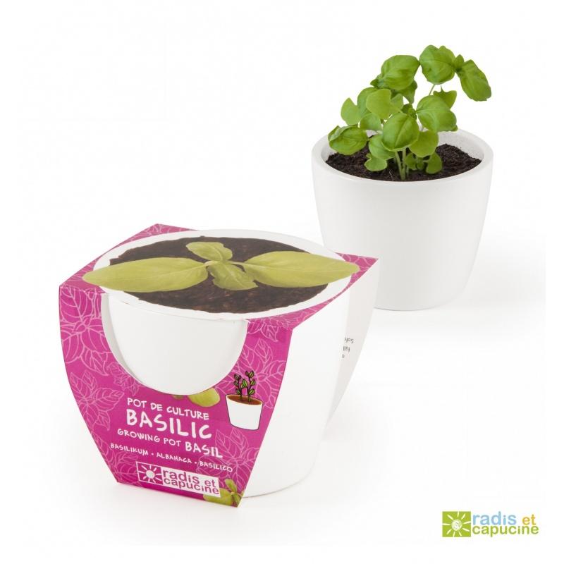 Mini zahrádka - Mini květináč Ceramic s bazalkou