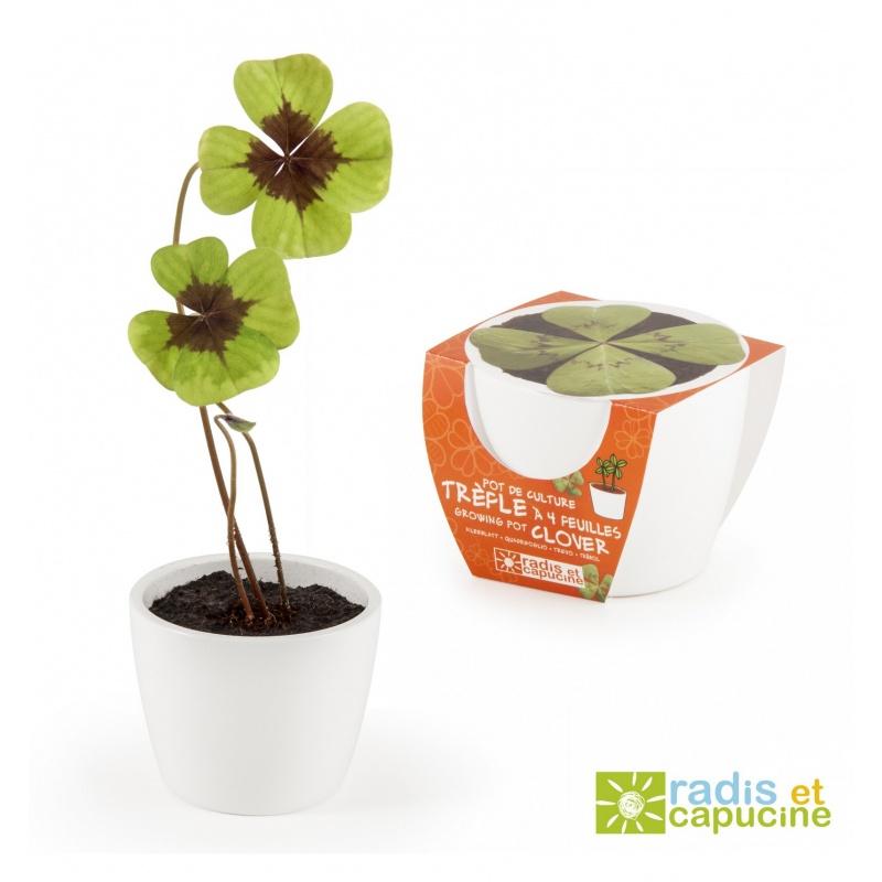 Mini zahrádka - Mini květináč Ceramic s čtyřlístkem