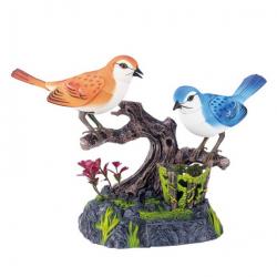 Ptáci zpívající s pohybem