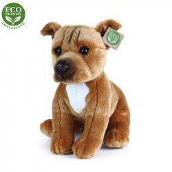 Pluszowy pies Staffordshire Bull Terrier siedzący, 30 cm
