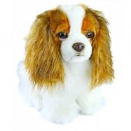 Plyšový pes King Charles Španěl, 20 cm