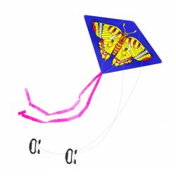 drak létající 2 druhy, 110 x 71 cm