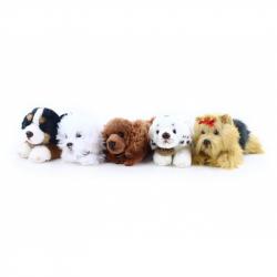 plyšový pes ležící, 5 druhů, 17 cm
