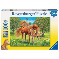Koně na pastvině 100 XXL dílků