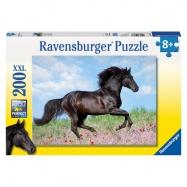 Černý hřebec; 200 dílků