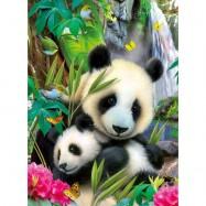 Panda 300d