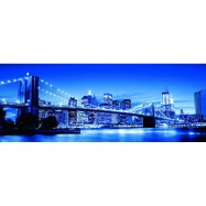 New York 1000d panorama
