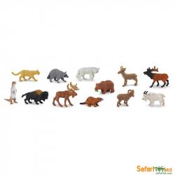 Safari Ltd - Tuba - Zvieratá Severnej Ameriky