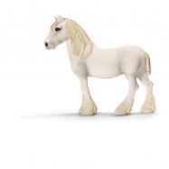 Shirský kůň - klisna chovná