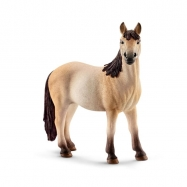 Klacz Mustang