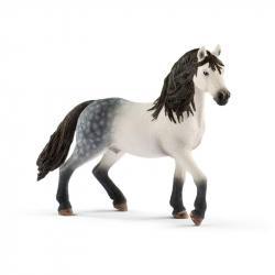 Zvieratko - andalúzsky žrebec