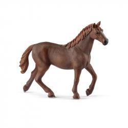 Zvieratko - anglická plnokrvná kobyla
