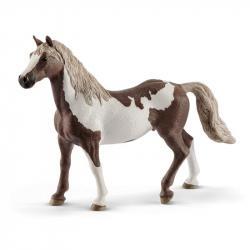 Valach plemena Paint Horse