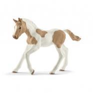 Zvířátko - Hříbě plemene Paint Horse
