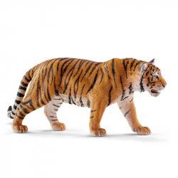 Pet - tygrys