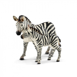 Zvířátko - mládě zebry