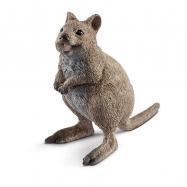 Zvířátko - Klokan Quokka