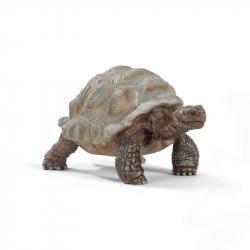 Zvířátko - želva obrovská