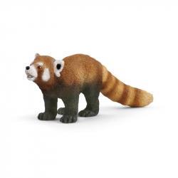 Pet - czerwona panda