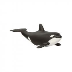 Zvířátko - mládě orca