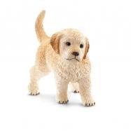 Zvířátko - štěně zlatého retrívra