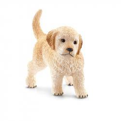 Zvieratko - šteňa zlatého retrívera