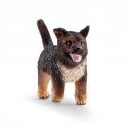 Zvieratko - šteňa nemeckého ovčiaka