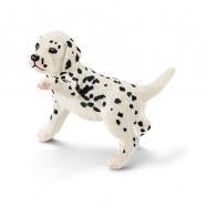 Zvířátko - dalmatin štěně