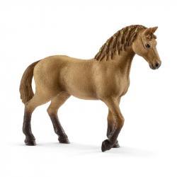set žriebä a Quarter kôň so šteniatkom a doplnky