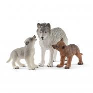 Vlčice a mládě vlka