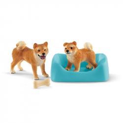 Sučka a šteňa Shiba Inu