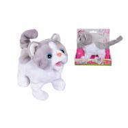 CCL Kočička