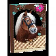 Box A4 Sweet Horse