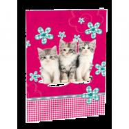 Desky na abecedu Cats