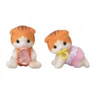 Baby dvojčata koťata javorových koček