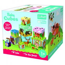 Baby Cubes W lesie