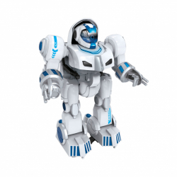 Robot RC Wiky