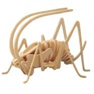 Dřevěné 3D puzzle dřevěná skládačka hmyz - Cvrček E015