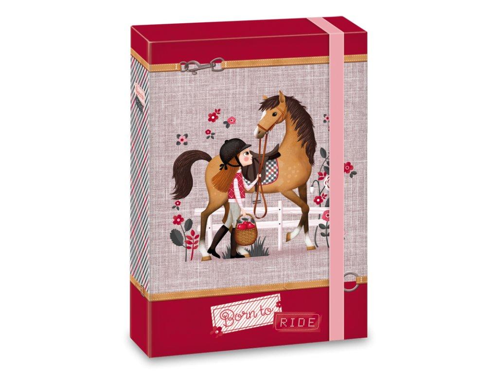 Box na sešity Koně Born to ride A5
